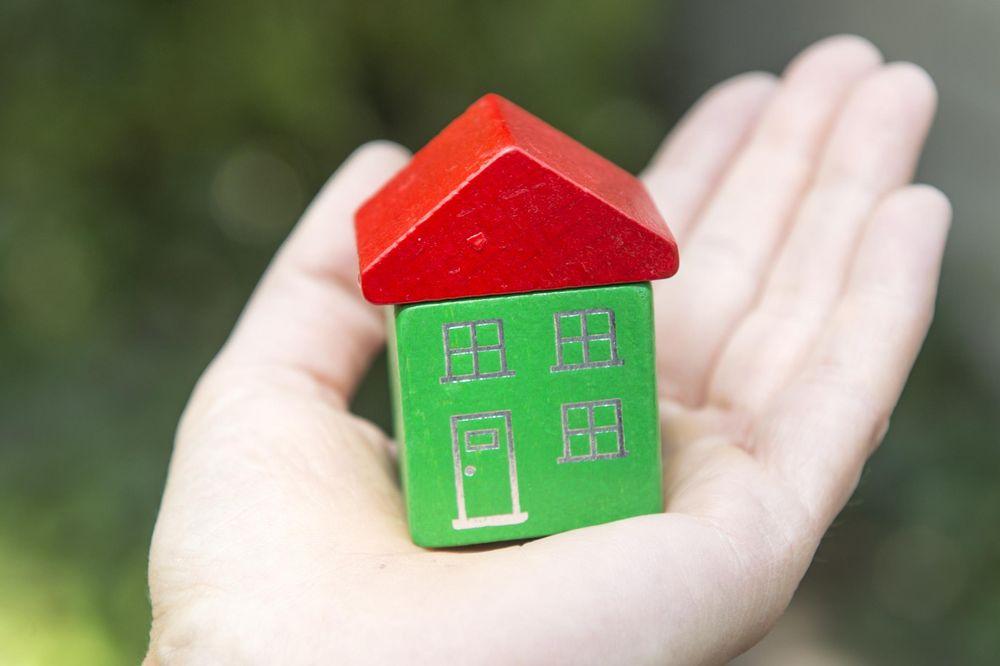 In einer Hand liegt ein grünes Holzhaus mit rotem Dach.