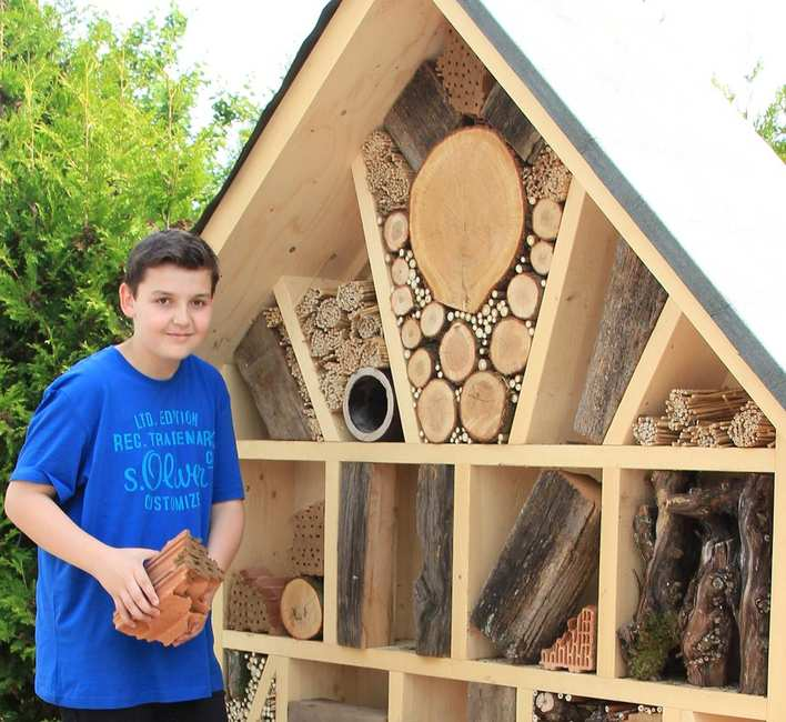 Junge vor Bienenhotel