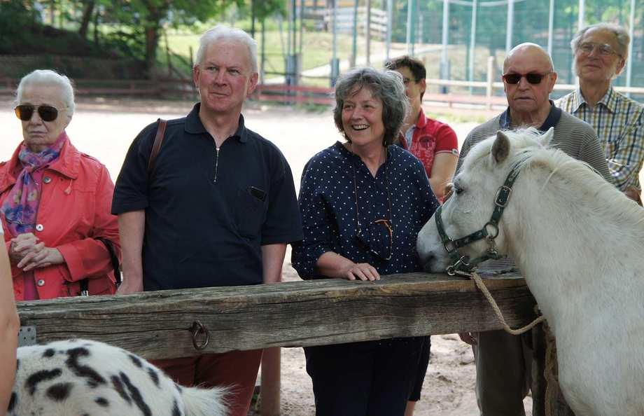 Drei Erwachsene stehen an einer Koppel. Zwei Pferde kommen Ihnen entgegen.