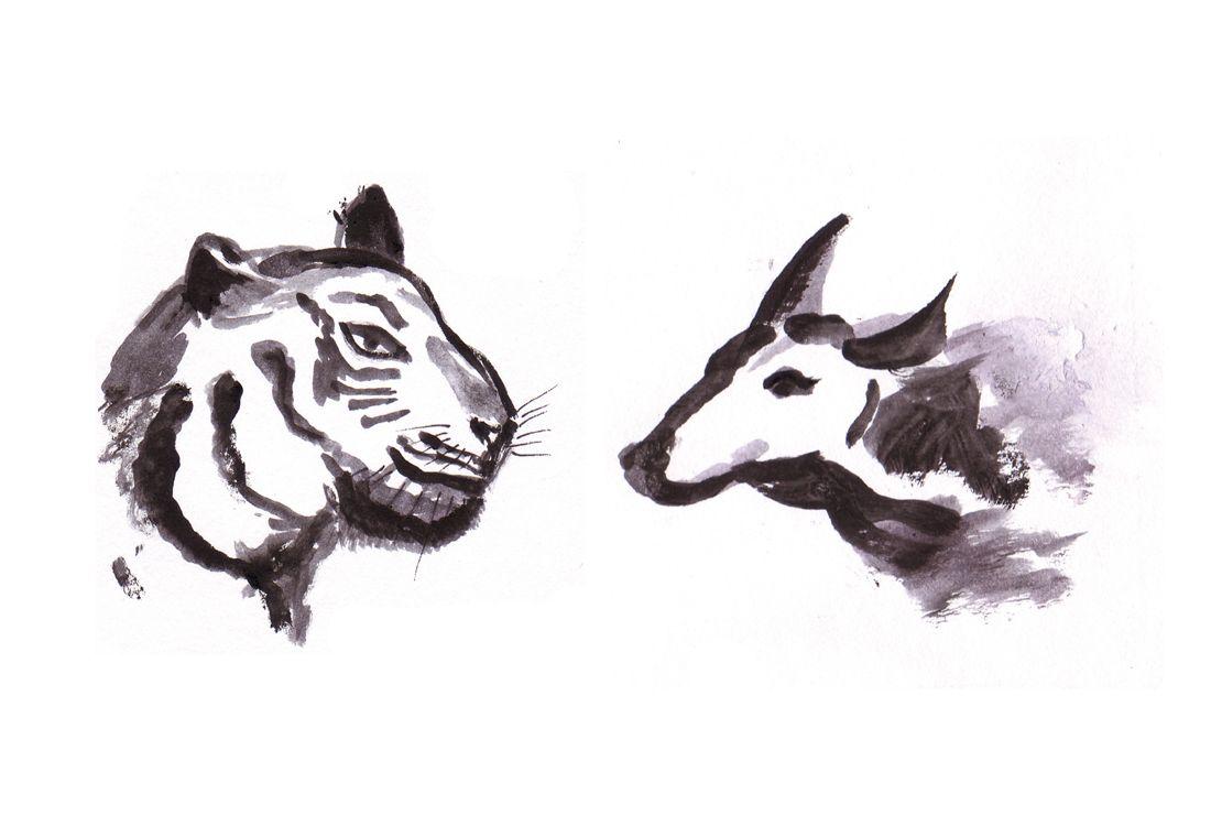 Tuschemalerei aus dem Märchenbuch: Ein Tigerkopf und ein Stierkopf schauen sich gegenseitig an.