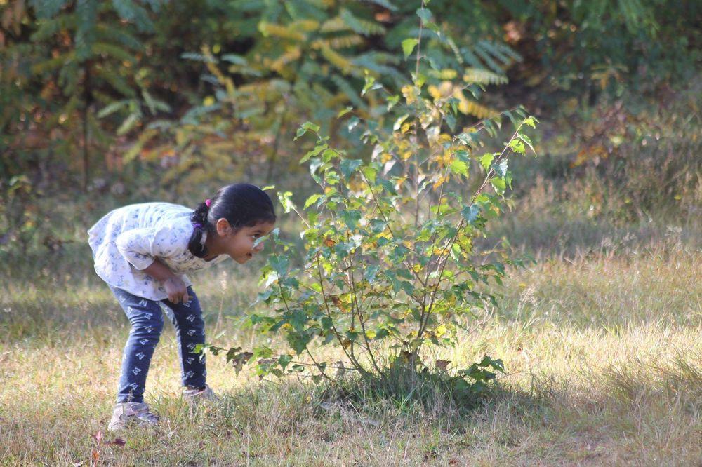 Ein kleines Mädchen, das sich hinter einem Gebüsch versteckt
