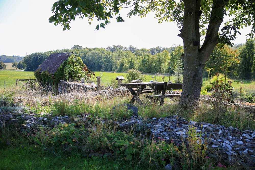 Gartenidylle mit Tisch und Bank inmitten der Natur