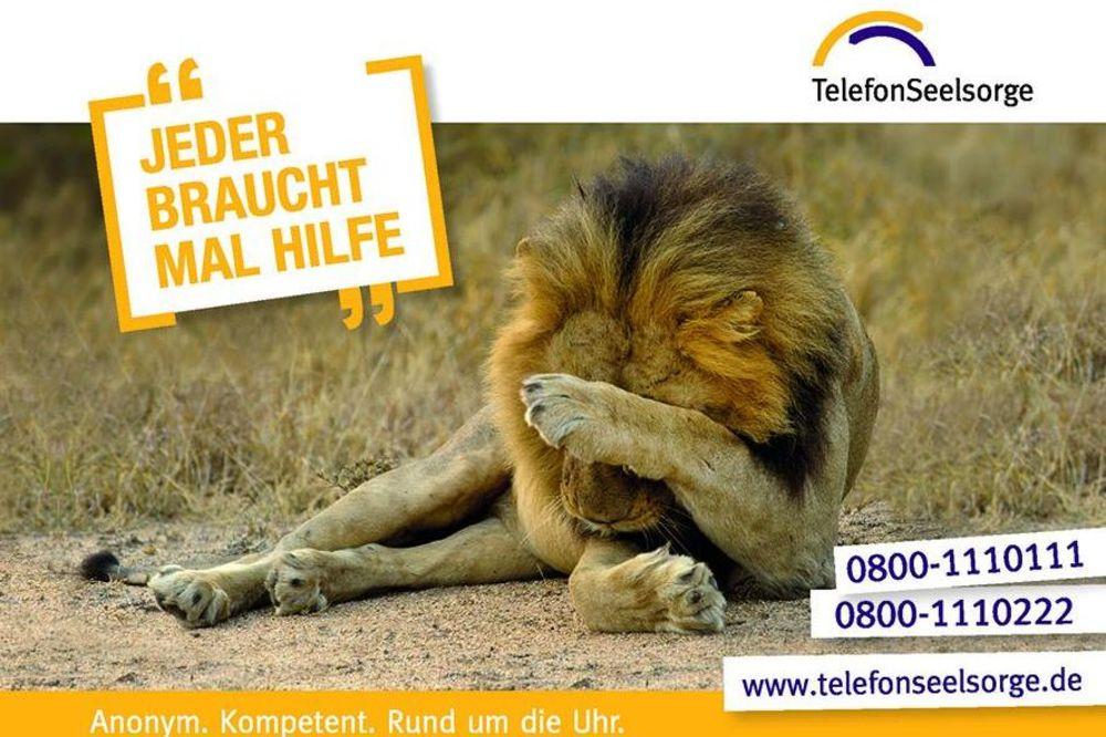 """Kampagne der Telefonseelsorge: Spruch """"Jeder braucht mal Hilfe"""" und nebendran ein Löwe, der sich die Augen mit einer Pfote zuhält."""